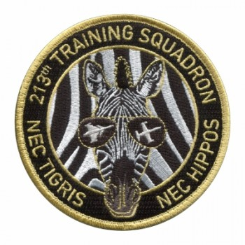 PATCH - 213th TRAINING SQUADRON